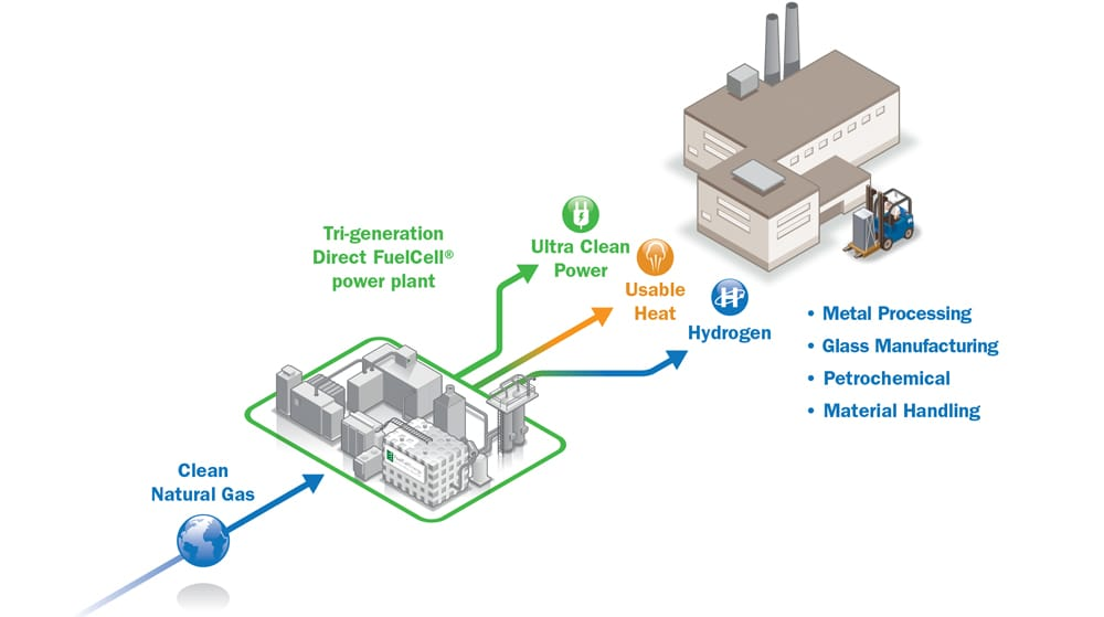 Hydrogen   FUELCELL ENERGY