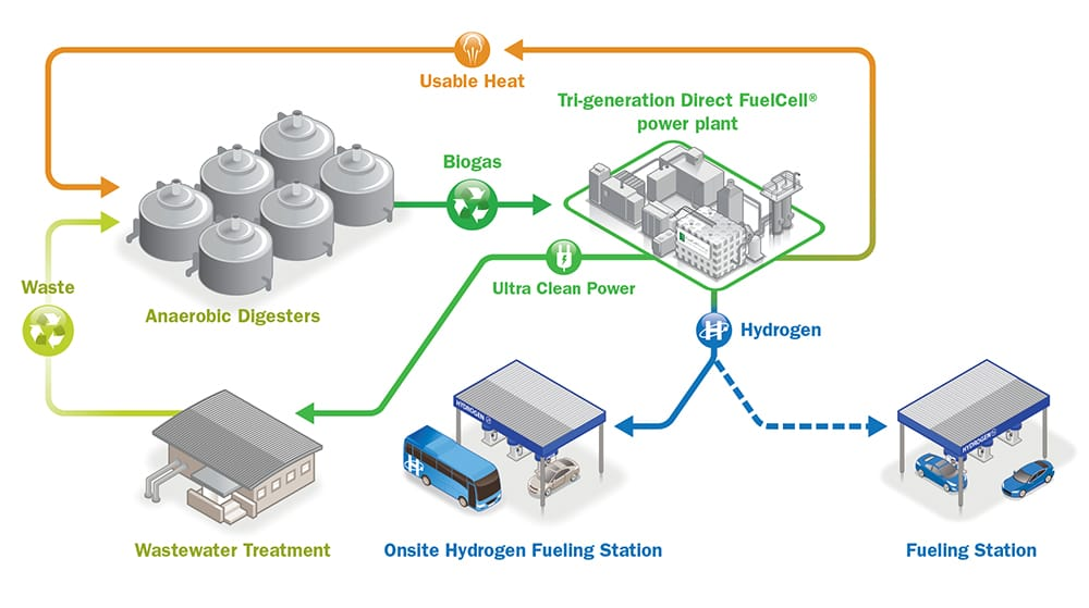 Hydrogen | FUELCELL ENERGY